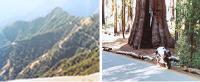 Motorcycle Roads Highway 198, Sequoia National Park