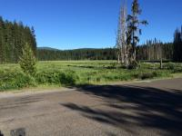Motorcycle Roads Timothy Lake Cutoff