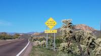 Motorcycle Roads Tortilla Flat